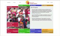 Vorschaubild zum Webdesign Projekt: Diospi Suyana